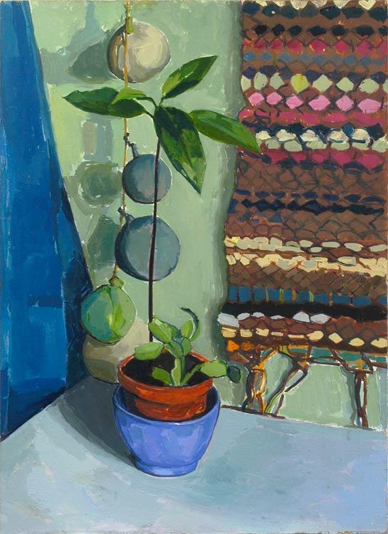 JOHN KING Avocado plant